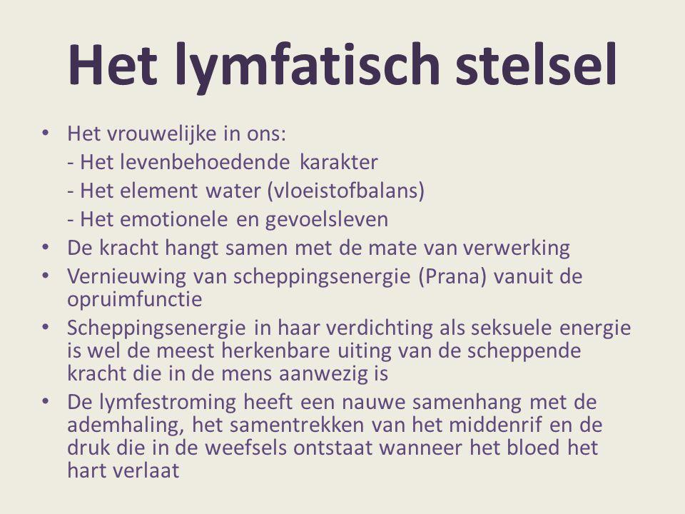 Het lymfatisch stelsel