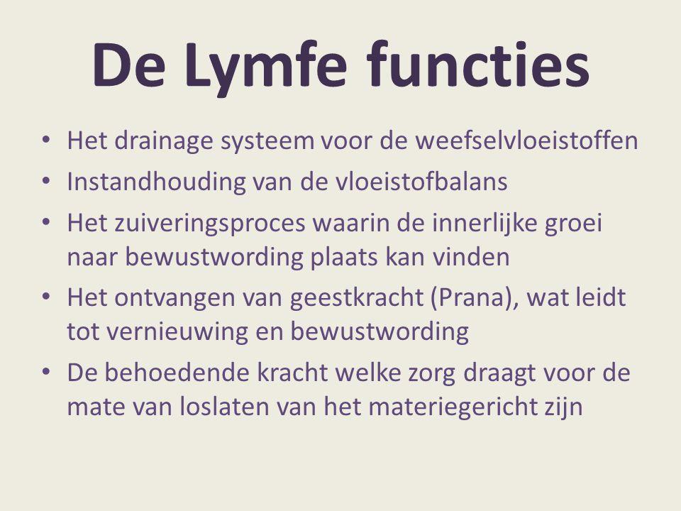 De Lymfe functies Het drainage systeem voor de weefselvloeistoffen