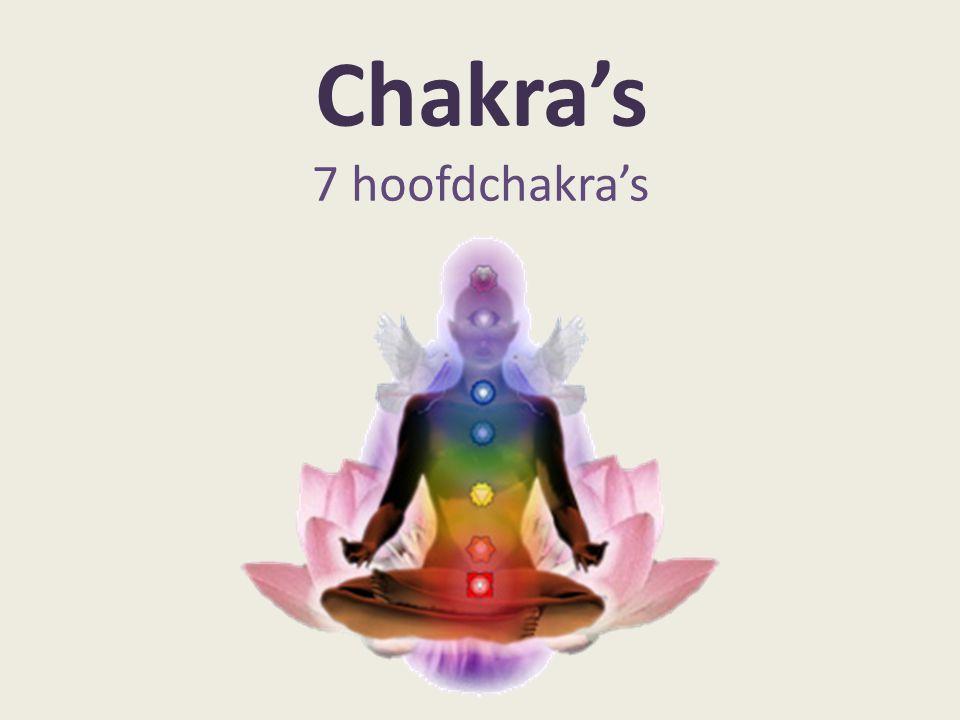 Chakra's 7 hoofdchakra's