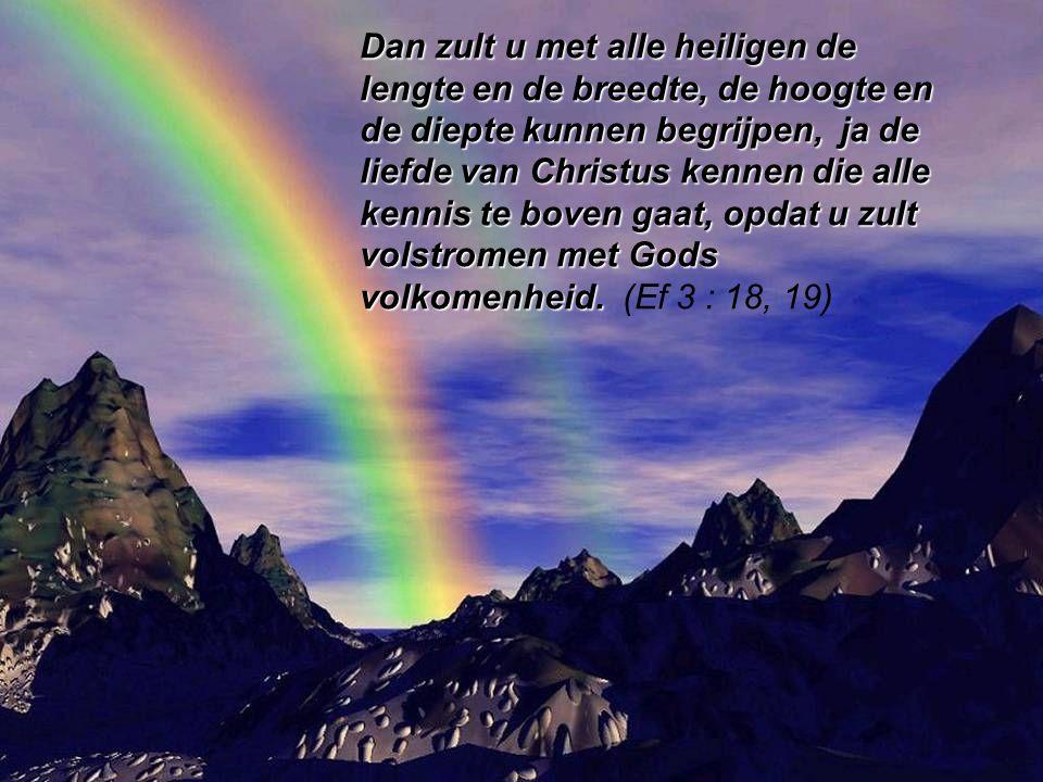 Dan zult u met alle heiligen de lengte en de breedte, de hoogte en de diepte kunnen begrijpen, ja de liefde van Christus kennen die alle kennis te boven gaat, opdat u zult volstromen met Gods volkomenheid.