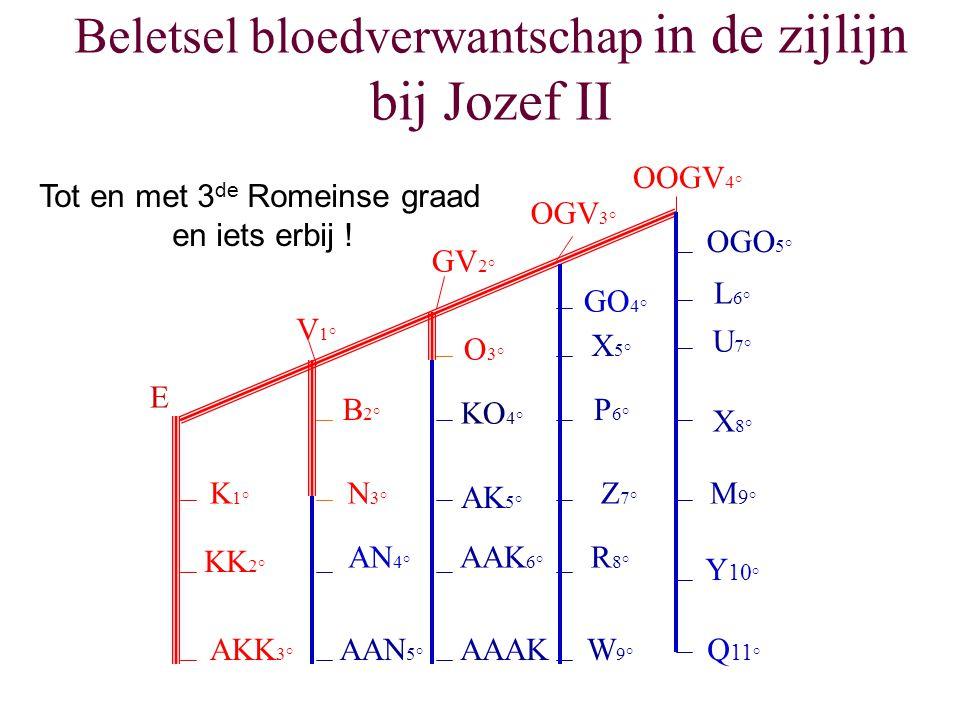 Beletsel bloedverwantschap in de zijlijn bij Jozef II