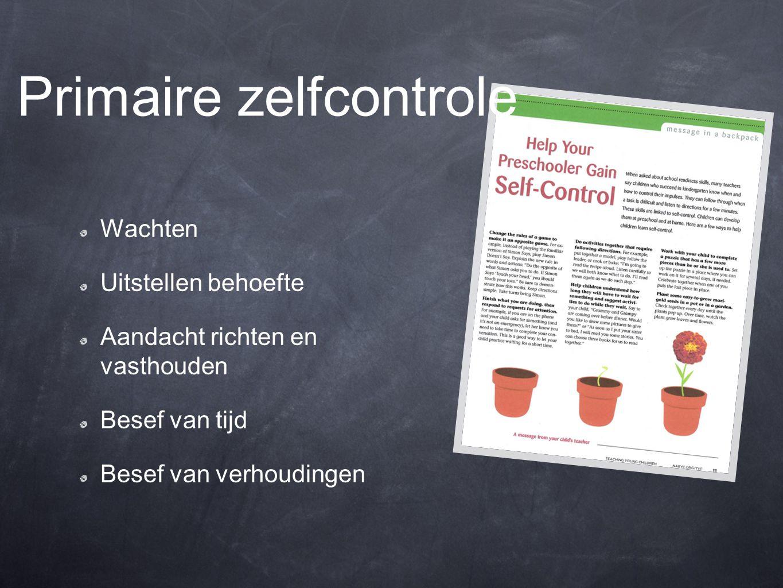 Primaire zelfcontrole