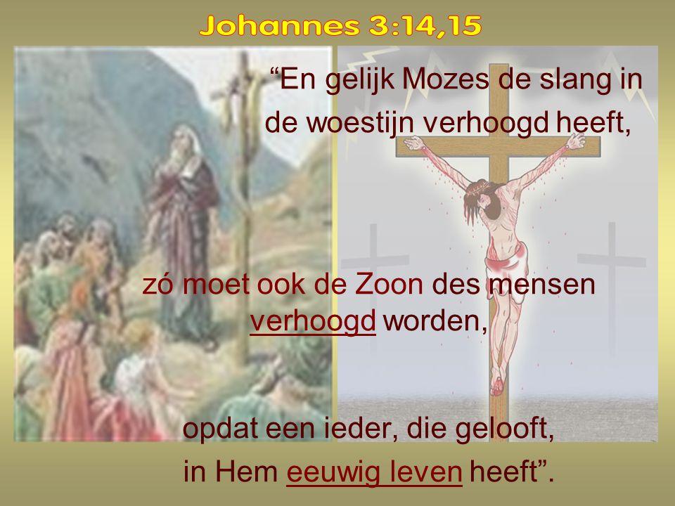 Johannes 3:14,15 En gelijk Mozes de slang in