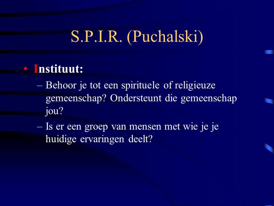 S.P.I.R. (Puchalski) Instituut: