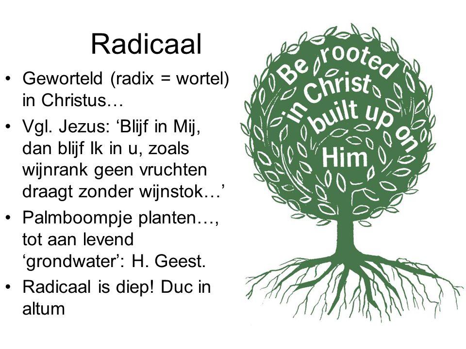Radicaal Geworteld (radix = wortel) in Christus…