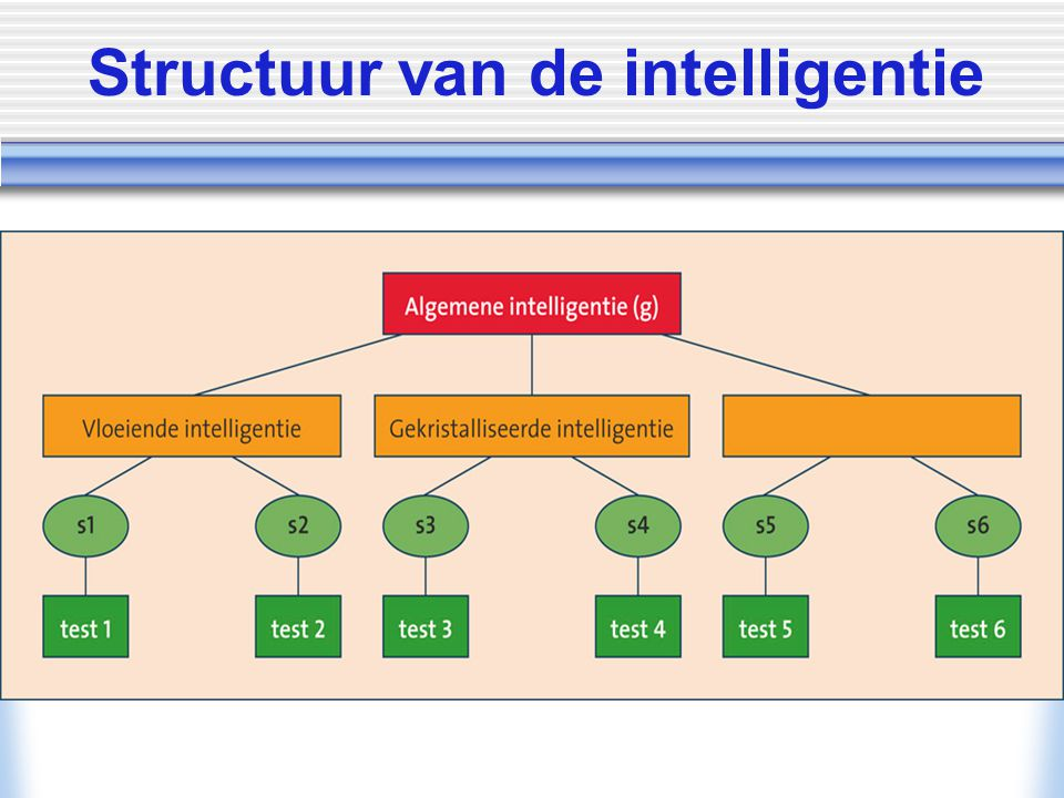 Structuur van de intelligentie