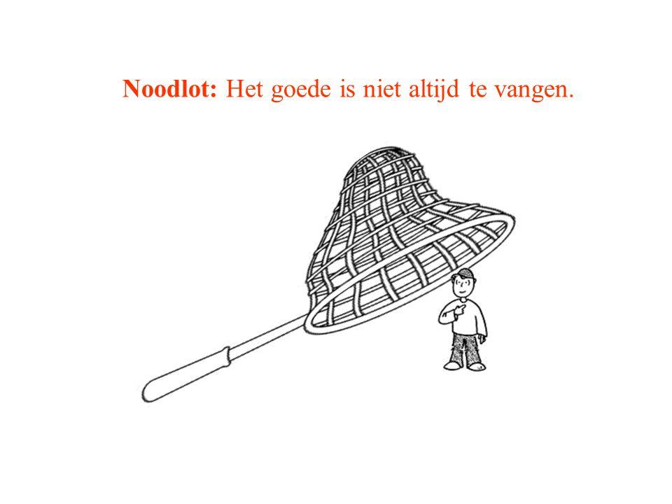 Noodlot: Het goede is niet altijd te vangen.