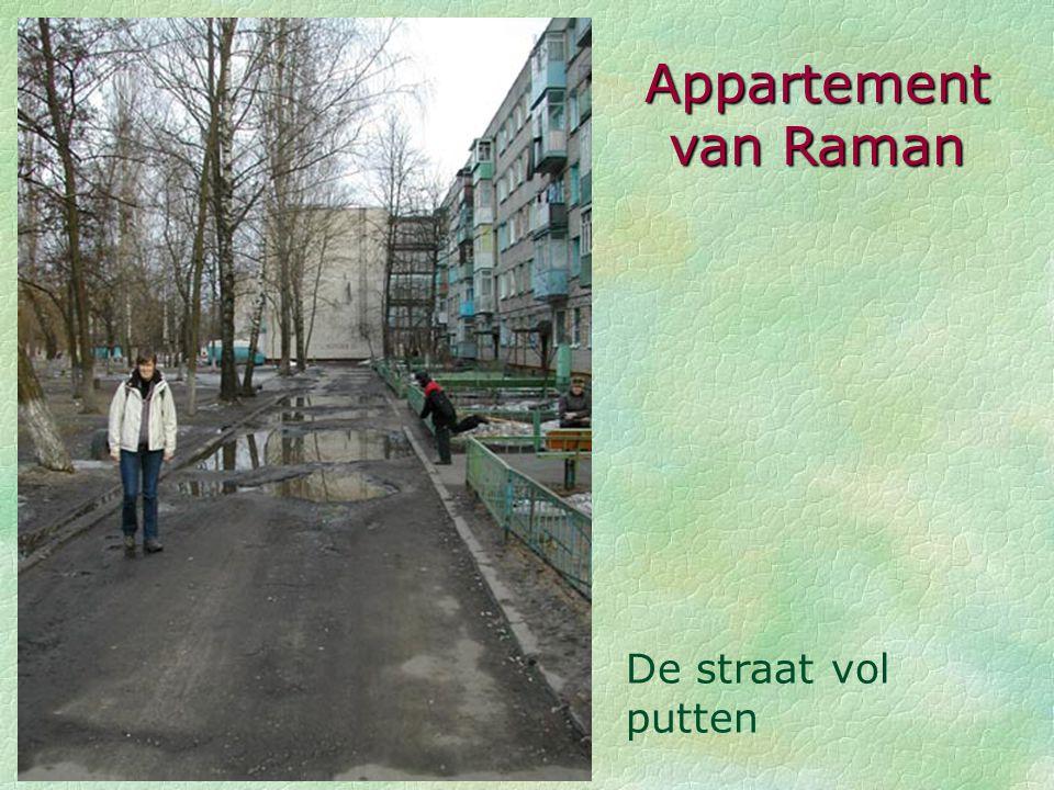 Appartement van Raman De straat vol putten