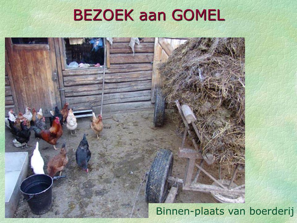 BEZOEK aan GOMEL Binnen-plaats van boerderij
