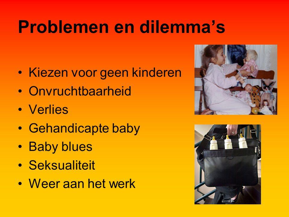 Problemen en dilemma's