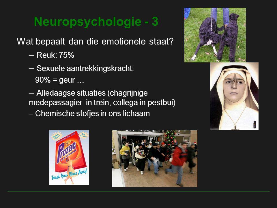Neuropsychologie - 3 Wat bepaalt dan die emotionele staat Reuk: 75%