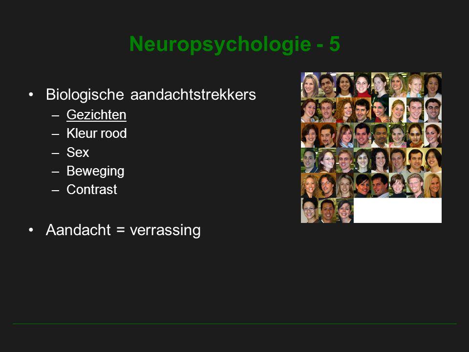 Neuropsychologie - 5 Biologische aandachtstrekkers