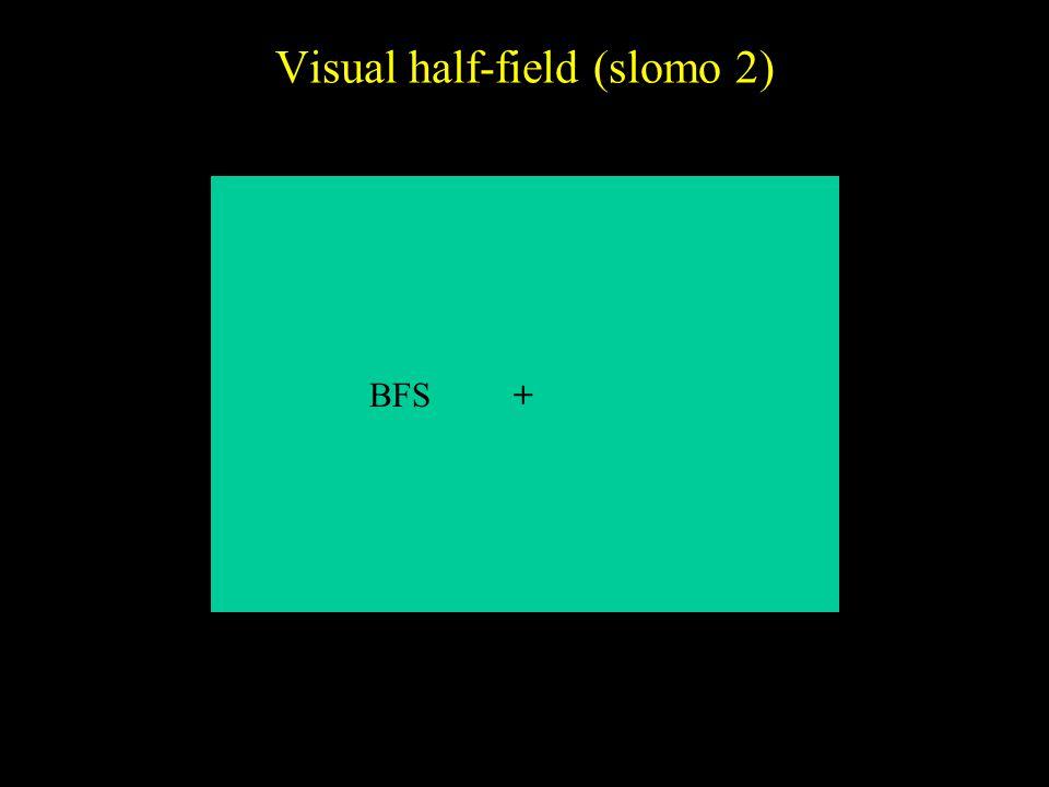 Visual half-field (slomo 2)