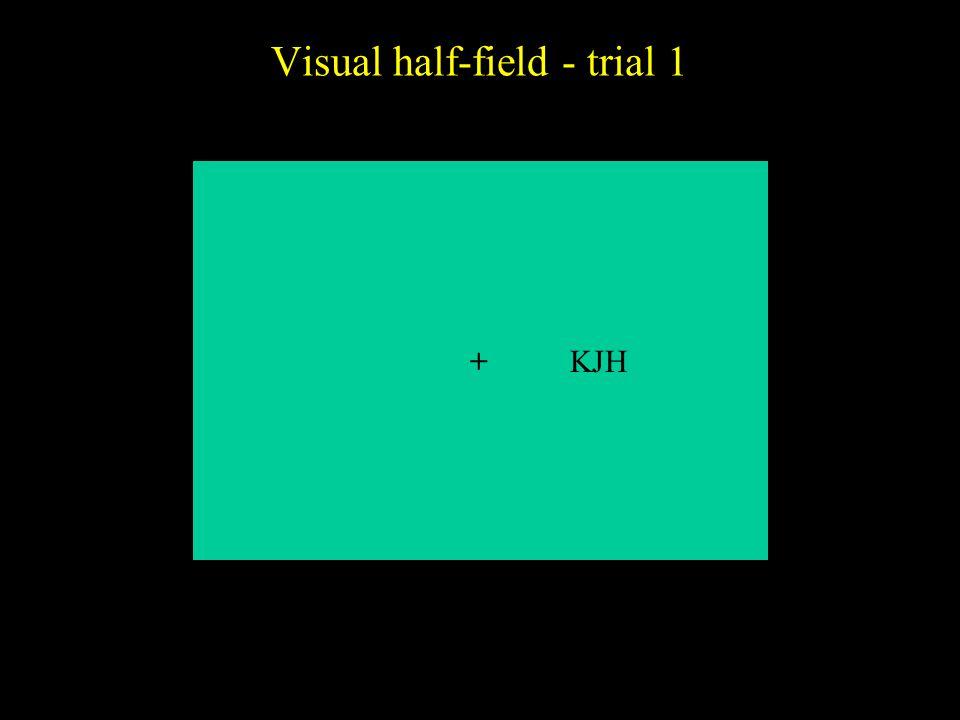 Visual half-field - trial 1