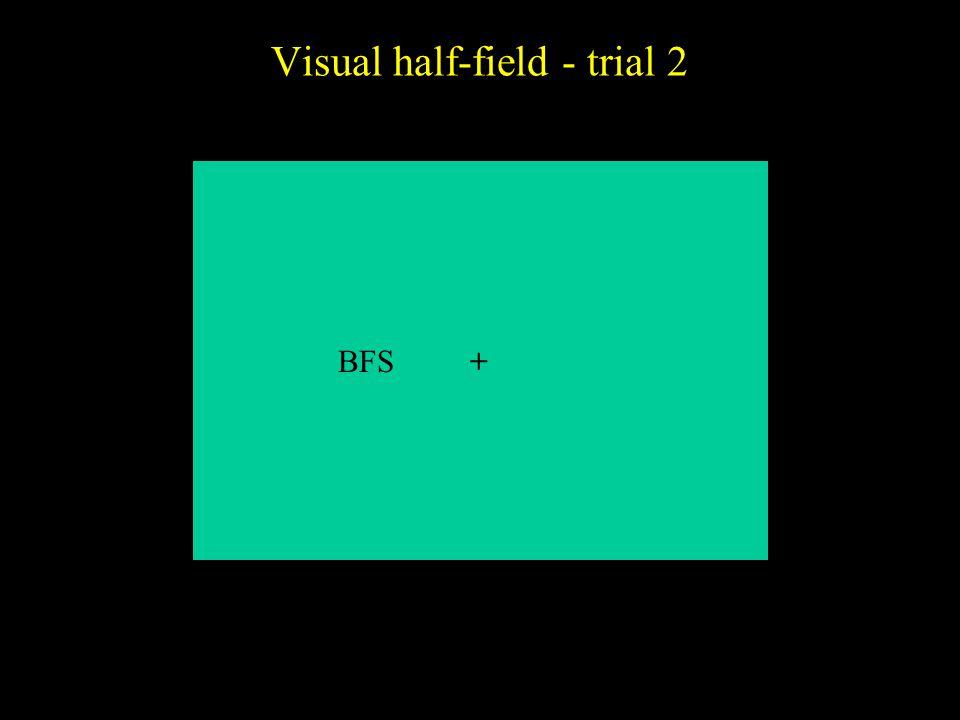 Visual half-field - trial 2