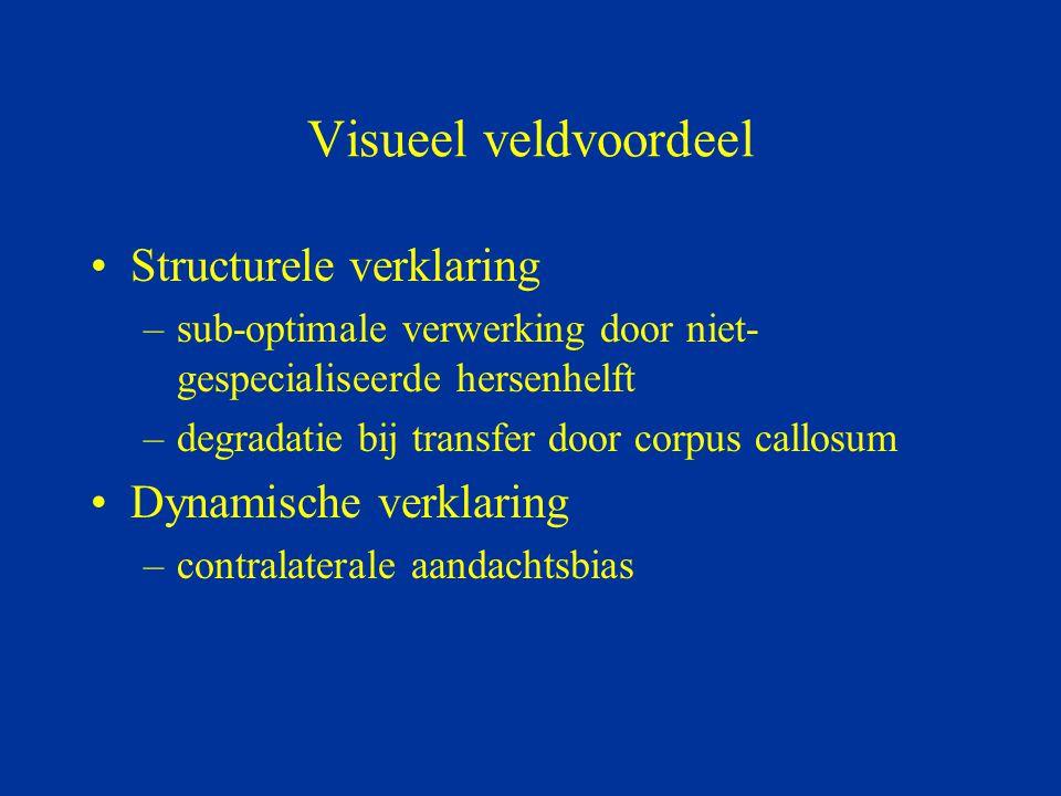 Visueel veldvoordeel Structurele verklaring Dynamische verklaring