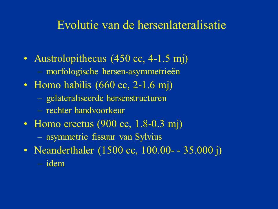 Evolutie van de hersenlateralisatie