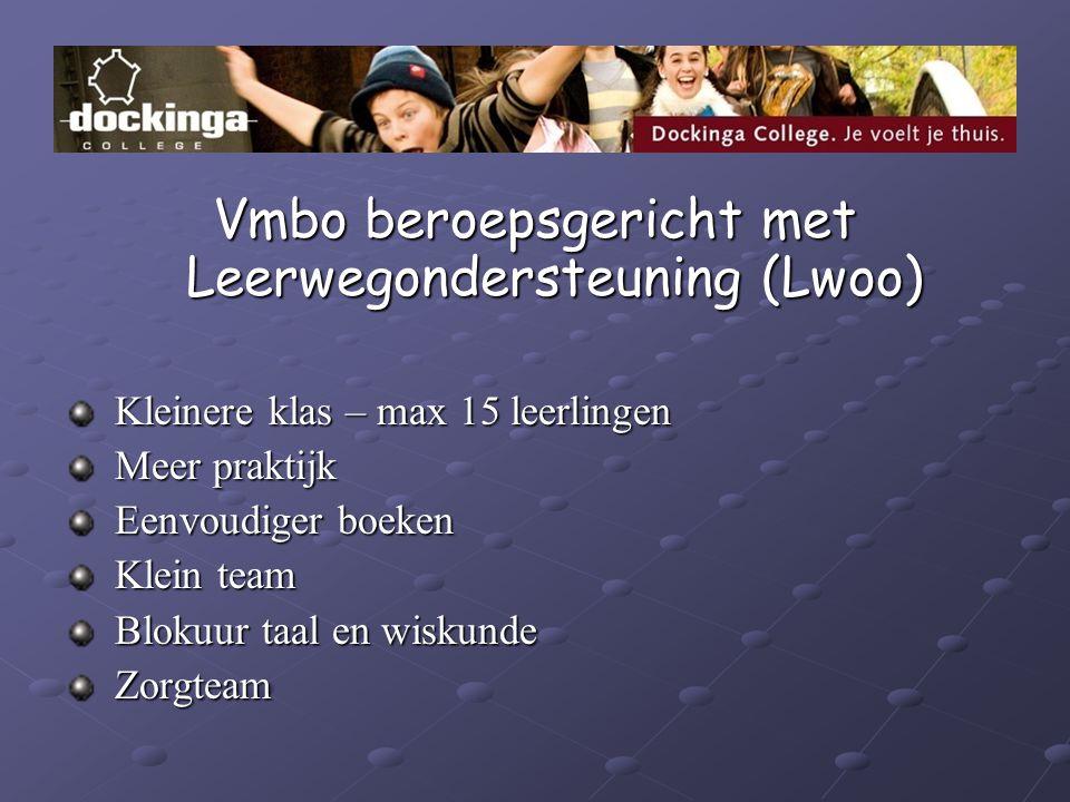 Vmbo beroepsgericht met Leerwegondersteuning (Lwoo)
