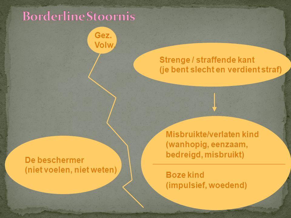 Borderline Stoornis Gez. Volw. Strenge / straffende kant