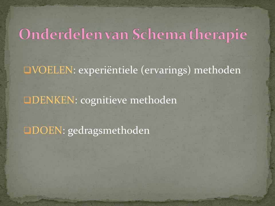 Onderdelen van Schema therapie