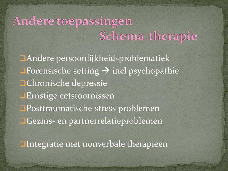 Andere toepassingen Schema therapie