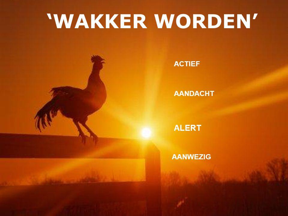 ALERT ACTIEF AANDACHT AANWEZIG 'WAKKER WORDEN'