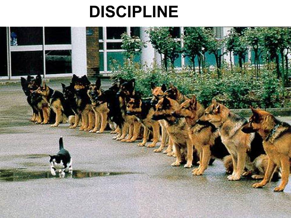 DISCIPLINE Discipline