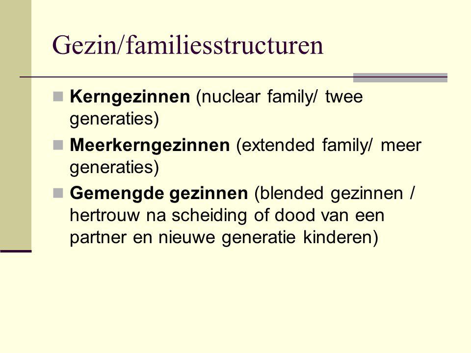 Gezin/familiesstructuren