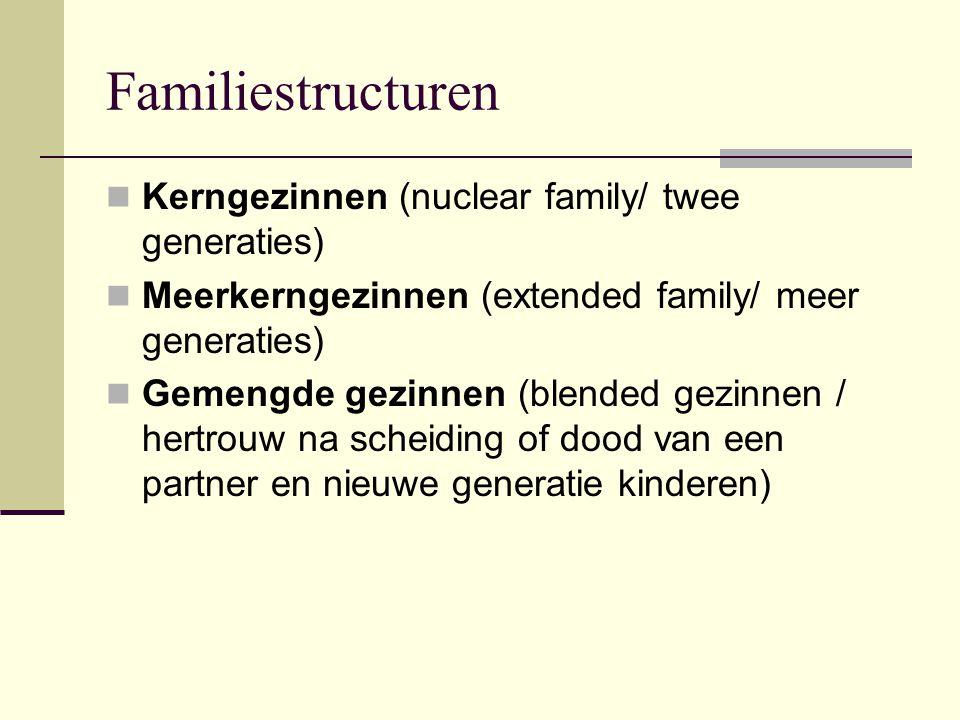 Familiestructuren Kerngezinnen (nuclear family/ twee generaties)