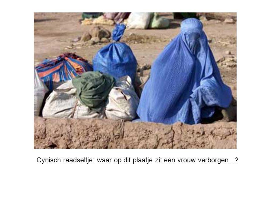 Cynisch raadseltje: waar op dit plaatje zit een vrouw verborgen...