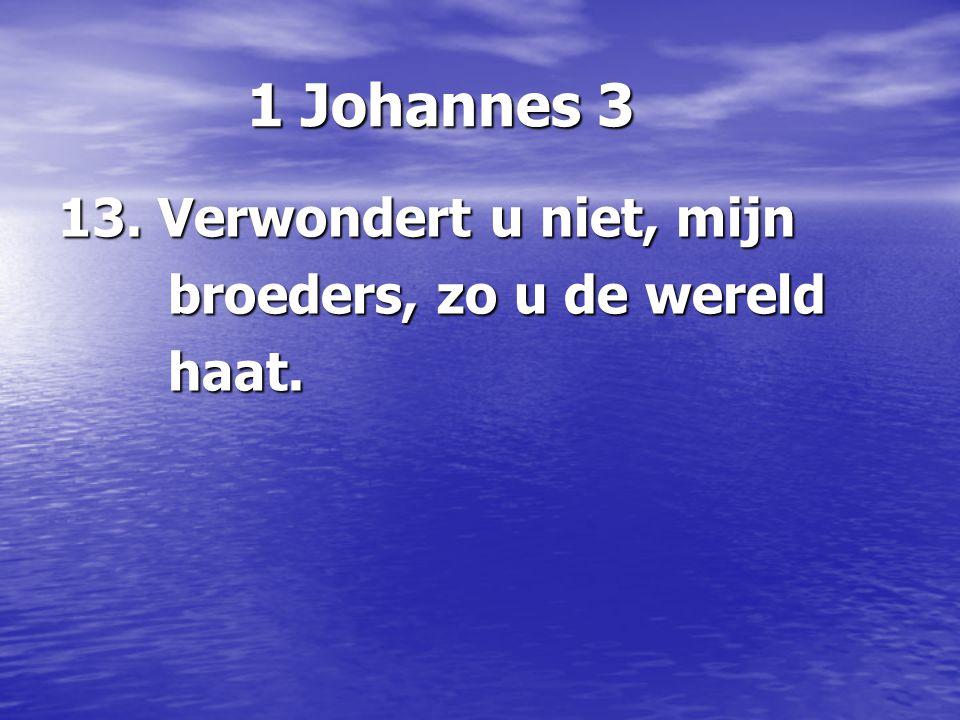 1 Johannes 3 13. Verwondert u niet, mijn broeders, zo u de wereld