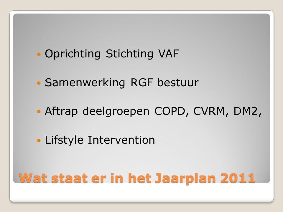 Wat staat er in het Jaarplan 2011
