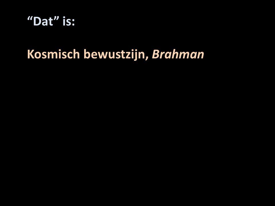 Dat is: Kosmisch bewustzijn, Brahman