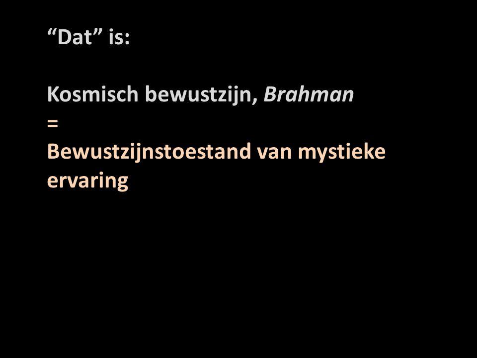 Dat is: Kosmisch bewustzijn, Brahman = Bewustzijnstoestand van mystieke ervaring