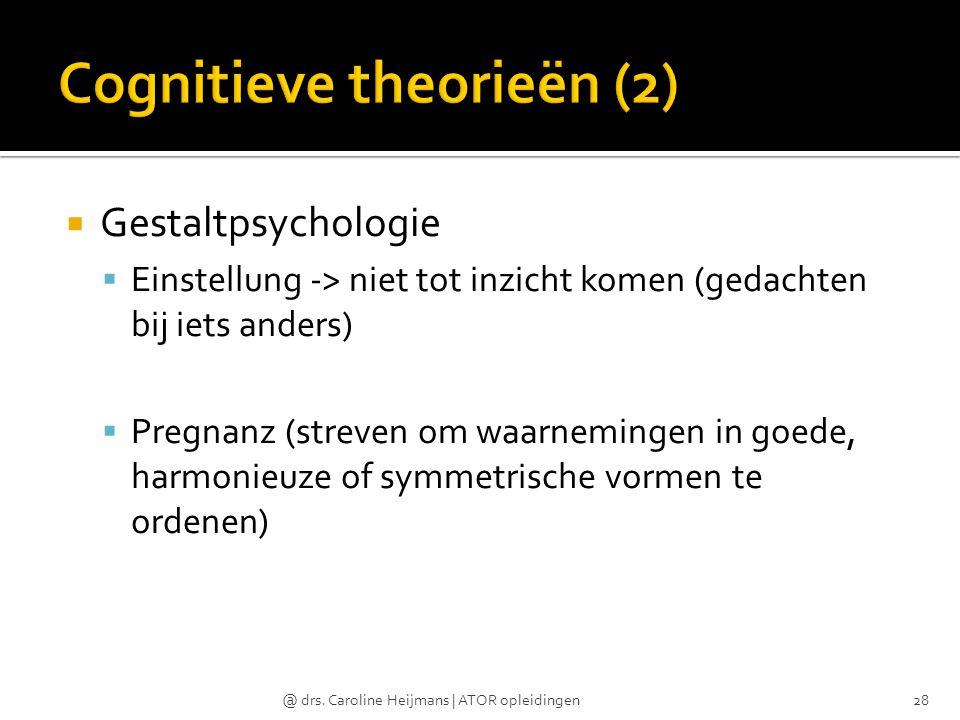 Cognitieve theorieën (2)