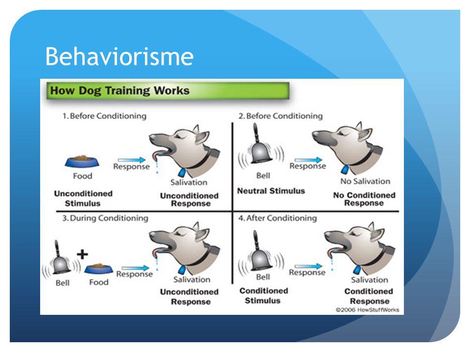 Behaviorisme Stimulus – gedragsreactie (reflex)