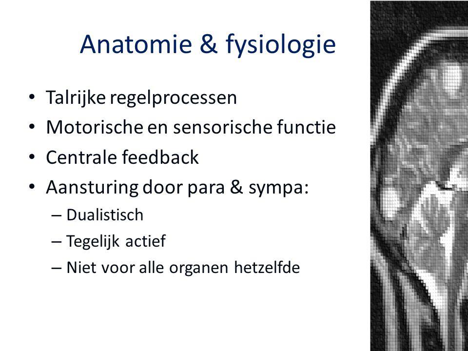Anatomie & fysiologie Talrijke regelprocessen