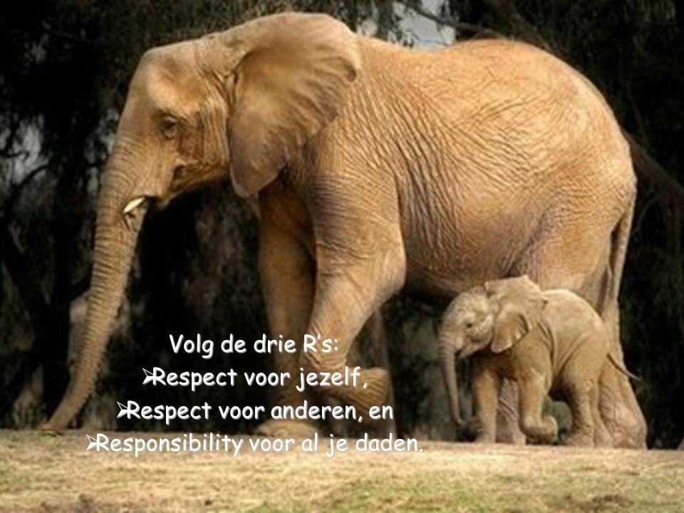 Respect voor anderen, en Responsibility voor al je daden.