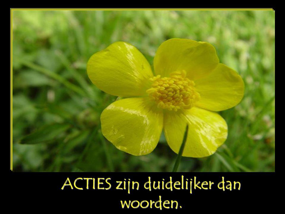 ACTIES zijn duidelijker dan woorden.