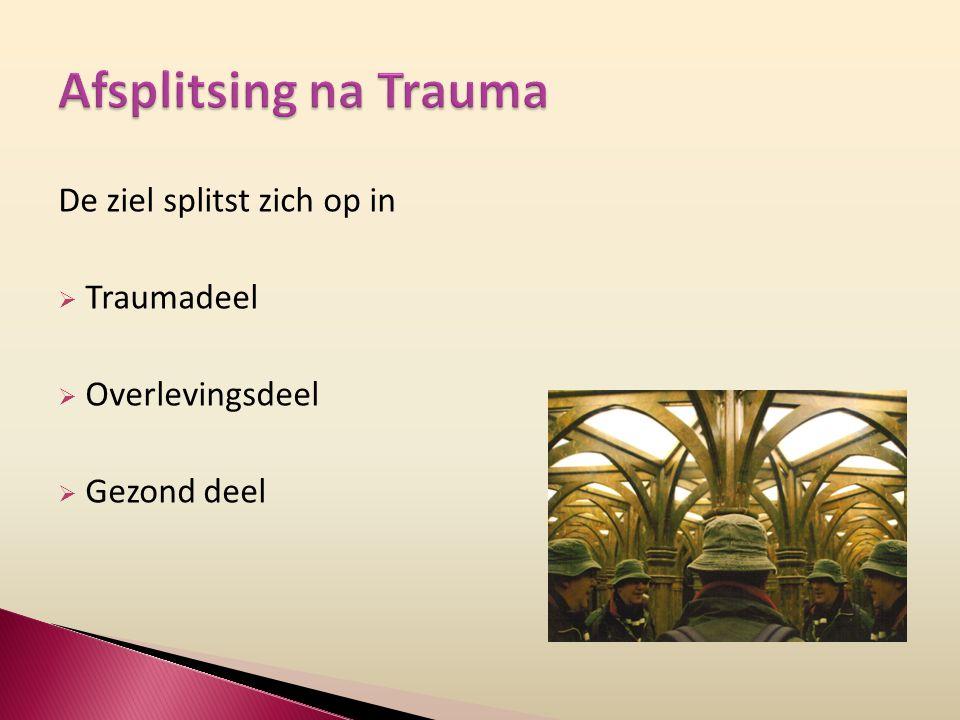 Afsplitsing na Trauma De ziel splitst zich op in Traumadeel