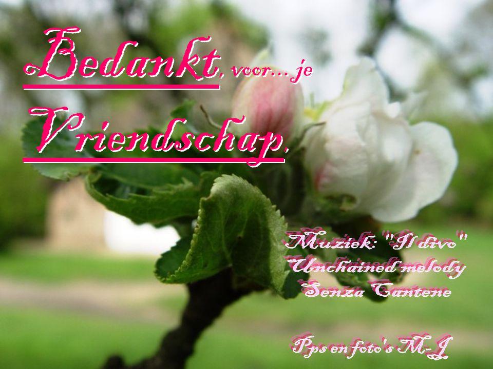 Bedankt, voor... je Vriendschap,