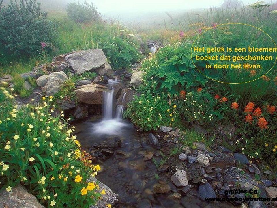 Het geluk is een bloemen