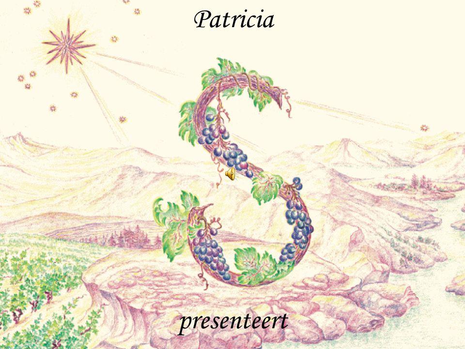 Patricia presenteert