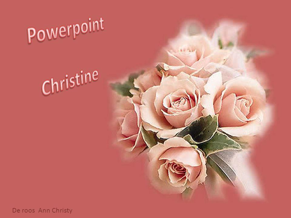 Powerpoint Christine De roos Ann Christy