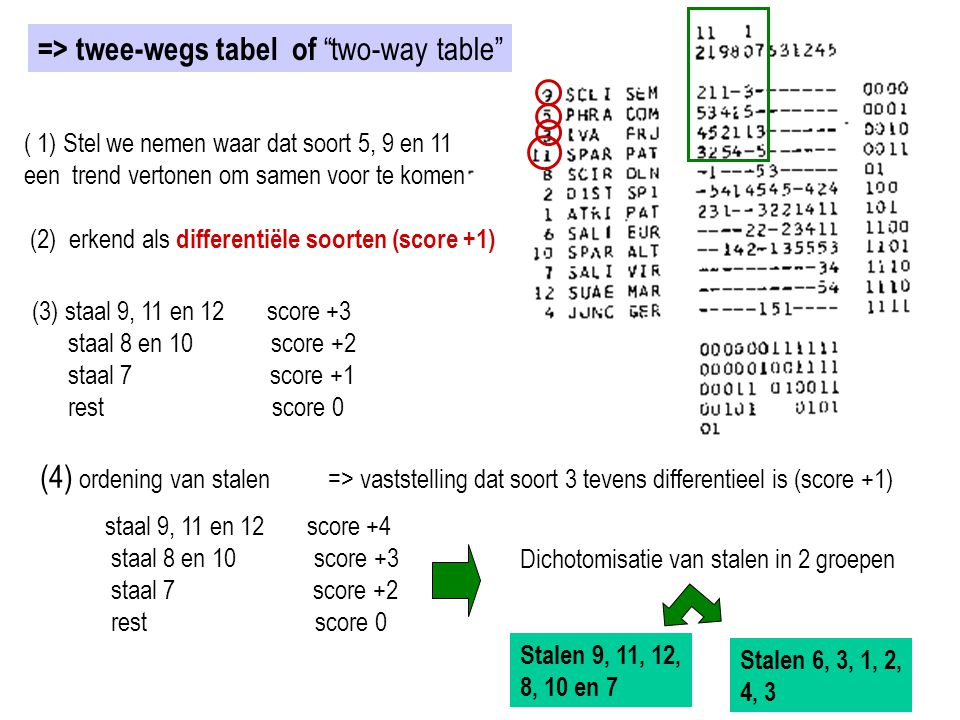 => twee-wegs tabel of two-way table
