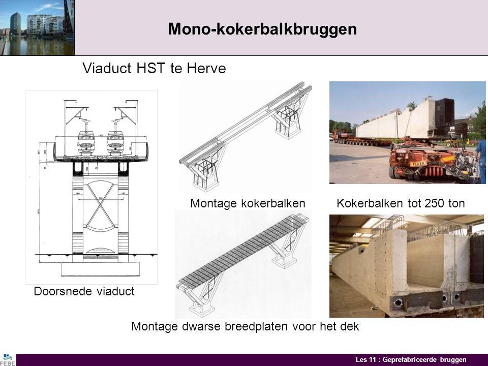 Mono-kokerbalkbruggen