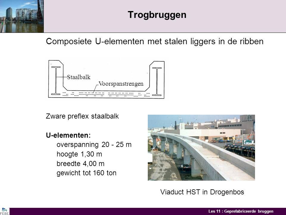 Trogbruggen Composiete U-elementen met stalen liggers in de ribben