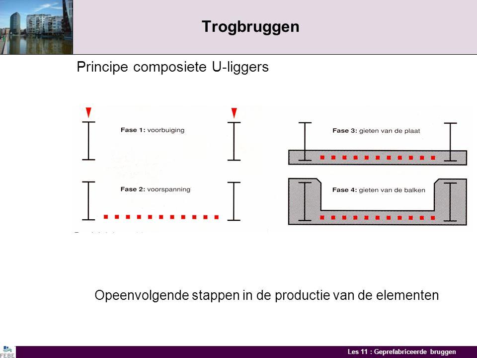 Trogbruggen Principe composiete U-liggers