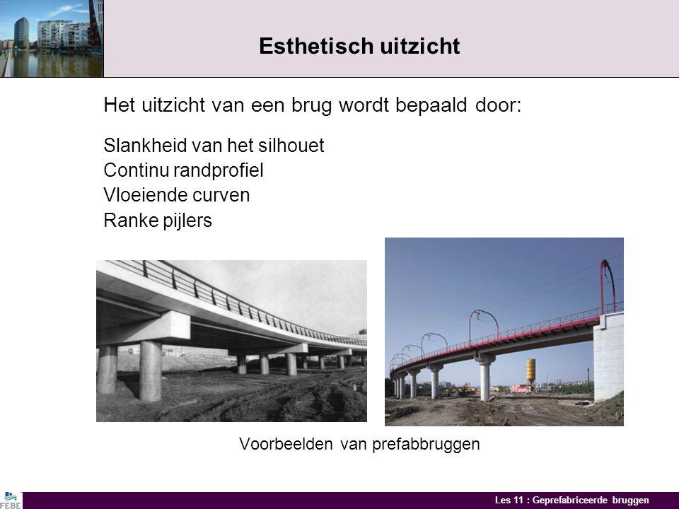 Esthetisch uitzicht Het uitzicht van een brug wordt bepaald door: