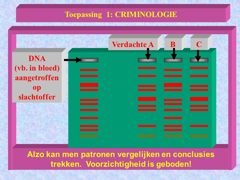 Toepassing 1: CRIMINOLOGIE